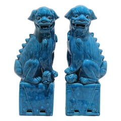 Pair of Foo Dogs in Peking Blue Glaze