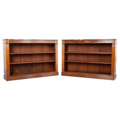 Pair of French 19th Century Empire-Style Bookcases