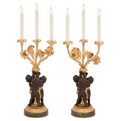 Pair of French 19th Century Louis XVI Style Candelabra Lamps