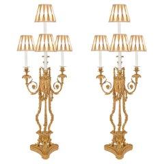 Louis XVI Lighting