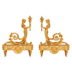 Pair of French 19th Century Louis XVI Style Ormolu and Silvered Bronze Andirons