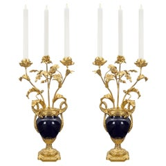Pair of French 19th Century Louis XVI Style Sèvres Porcelain Candelabra