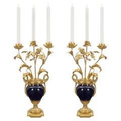 Pair of French 19th Century Louis XVI Style Sèvres Porcelain Candelabras