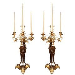 Pair of French 19th Century Neoclassical Style Bronze and Ormolu Candelabras