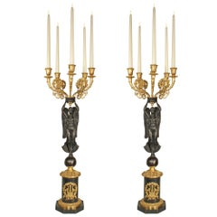 Pair of French 19th Century Neoclassical Style Five-Arm Candelabras