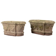 Pair of French 19th Century Oblong Cast Stone Planters