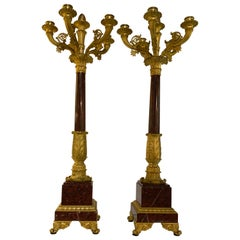 Pair of French bronze Dore and Rouge Griotte Candelabrum, Charles X, 19 th c.