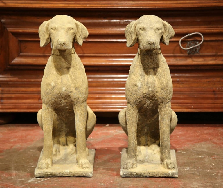 Pair of French Concrete Verdigris Patinated Labrador Dog Sculptures In Excellent Condition For Sale In Dallas, TX