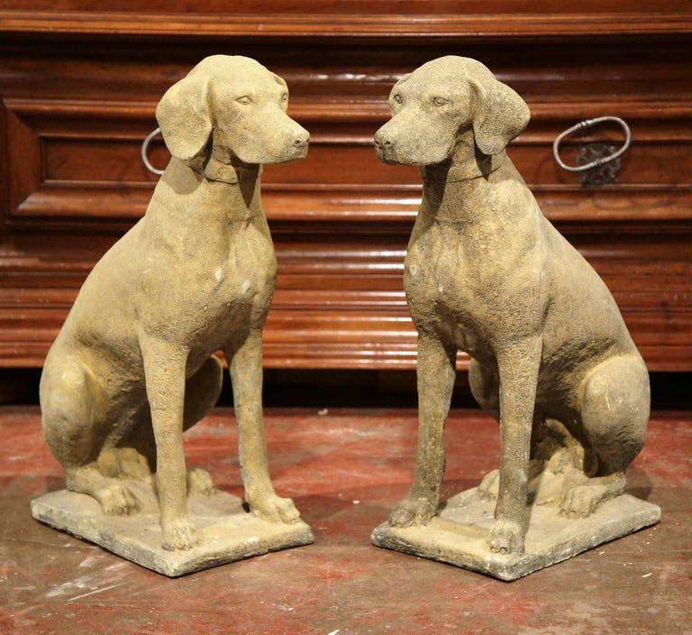 Contemporary Pair of French Concrete Verdigris Patinated Labrador Dog Sculptures For Sale