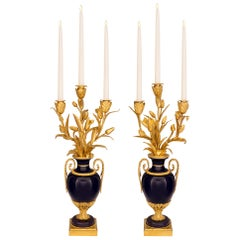 Pair of French Early 19th Century Louis XVI St. Porcelain and Ormolu Candelabra
