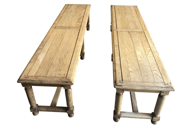 Pair of French Early 20th Century Benches In Good Condition For Sale In Atlanta, GA