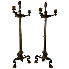 A Pair of Patinated Bronze French Empire Candelabras