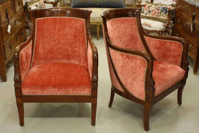 Pair of French Empire style mahogany bergeres or armchairs with carved mythical dolphin head on the arm ends and dolphin tails and scales where the arms meet the back (early 20th century). These chairs have been newly reupholstered in a gorgeous