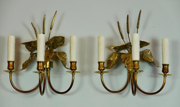 Pair of unusual and highly-decorative French gilt-bronze and brass three-arm sconces, in a naturalistic style, featuring cattails and leaves, in the manner of Maison Charles (mid-Century). The sconces will be newly re-wired for the US with three