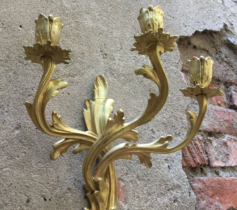 A pair of Louis XV style gilded bronze three-armed antique foliate wall lights sconces, of French origin, dating back to first half of 1900. Acanthus leaf scrolling arms with leaf bobeche drip pans and bulbous candle sconces, original and beautiful