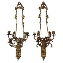 Pair of French Louis XV Style Bronze Four Light Sconces