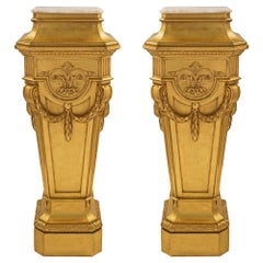 Pair of French Mid-19th Century Louis XVI St. Pedestal Columns