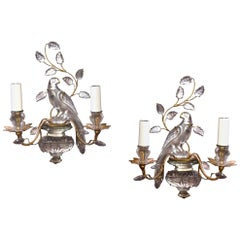 Pair of French Molded Glass Parrot Sconces