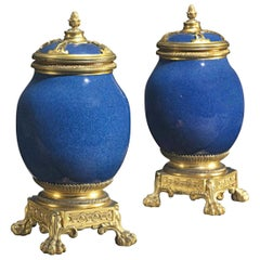 Pair of French Ormolu-Mounted Chinese Porcelain Vases and Covers