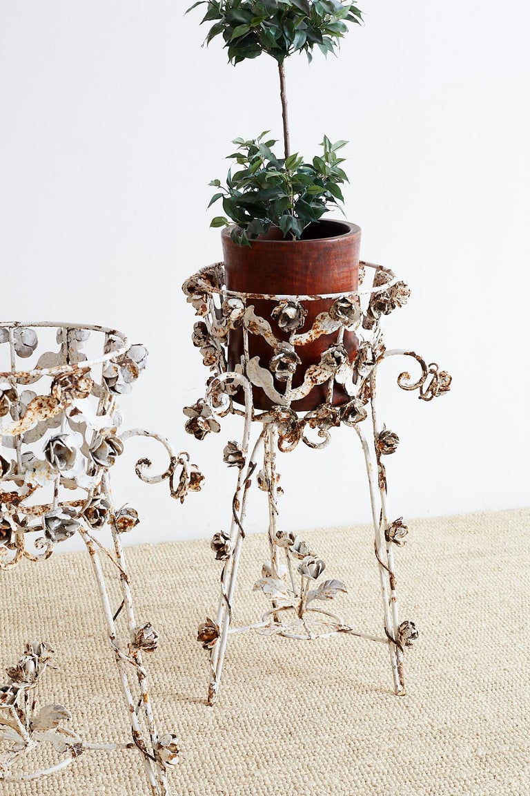 Pair of French Patinated Iron Jardinières or Plant Stands For Sale 4
