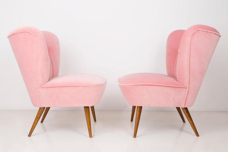 Mid-Century Modern Pair of German Midcentury Baby Pink Velvet Club Armchairs, 1960s For Sale