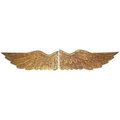 Pair of Gilded Angel Wings