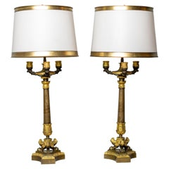 Pair of Gilt and Patinated Bronze Restauration Period Candelabra Lamps