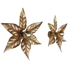 Pair of Gilt Brass Leaf Wall Lights by Massive Lighting, Belgium, 1970s