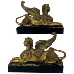 Pair of Gilt Bronze Grand Tour Winged Sphinxes on Ebonized Bases