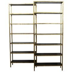 Pair of Gilt Metal Shelves from the Midcentury with Ebonized Wood Accents