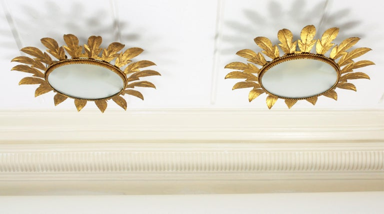 A lovely pair of hand-hammered gilt iron flower sunburst light fixtures with frosted glass difussors.  They can be used as ceiling or wall lights and the frosted glass can be changed by a mirror glass to be used as mirrors, Spain, 1960s.