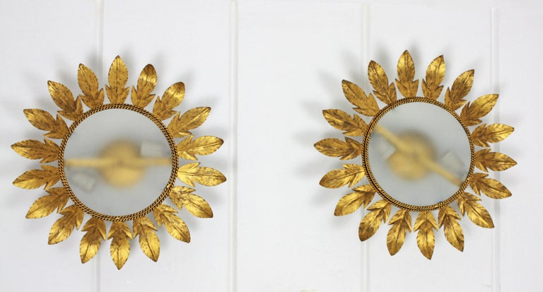 Frosted Spanish Midcentury Pair of Gilt Metal Sunburst Flower Light Fixtures or Mirrors For Sale