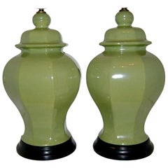 Pair of Ginger Jar Porcelain Lamps
