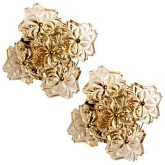 Pair of Glass and Brass Floral Wall Lights from Hillebrand, 1970s
