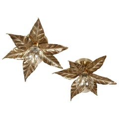 Pair of Gold Floral Sconces