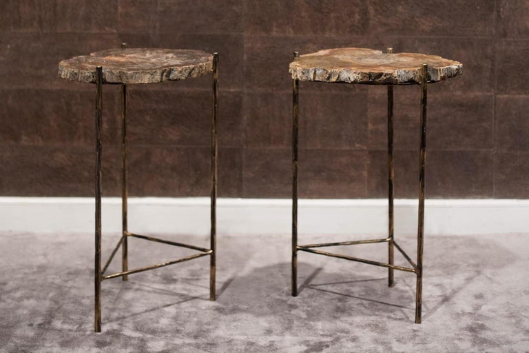 The two tabletops are made of two wonderfully unique, irregular pieces of veined fossil wood, supported on a three-foot base in black iron with golden highlights. In the lower part, the legs are joined together by a triangular piece, also black iron