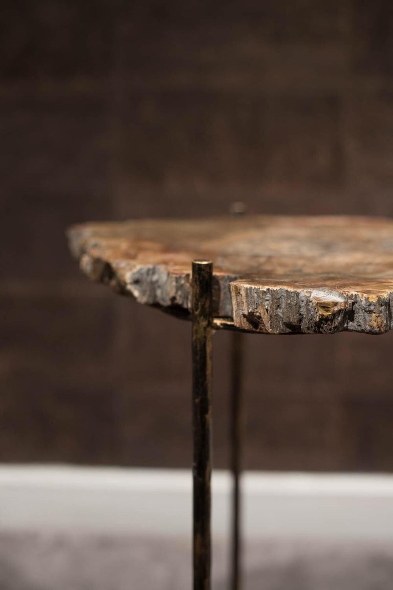 Pair of Italian End Tables with Petrified Wood Tops In Good Condition For Sale In Paris, FR