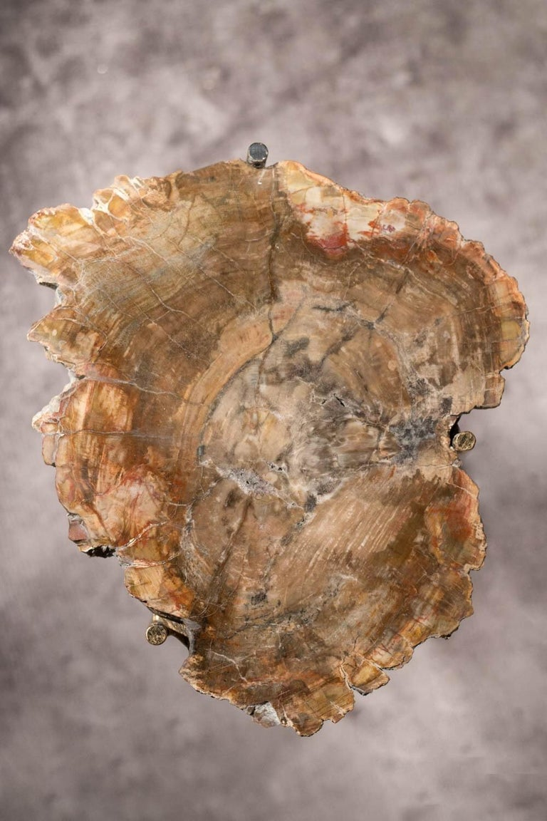 20th Century Pair of Italian End Tables with Petrified Wood Tops For Sale