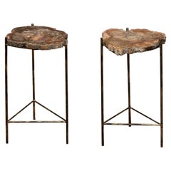 Pair of Golden Tables with Petrified Wood Tops, Italy, 1980