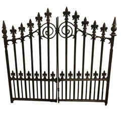 Pair of Gothic Revival Cast Iron Gates with Fleur-de-Lis Finials and Scrollwork