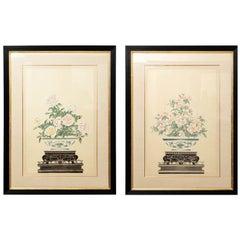 Pair of Gouache Paintings of Peonies