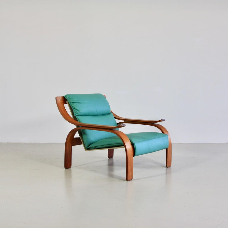 Pair of Green Leather Armchairs by Marco Zanuso, 1964 For Sale 2