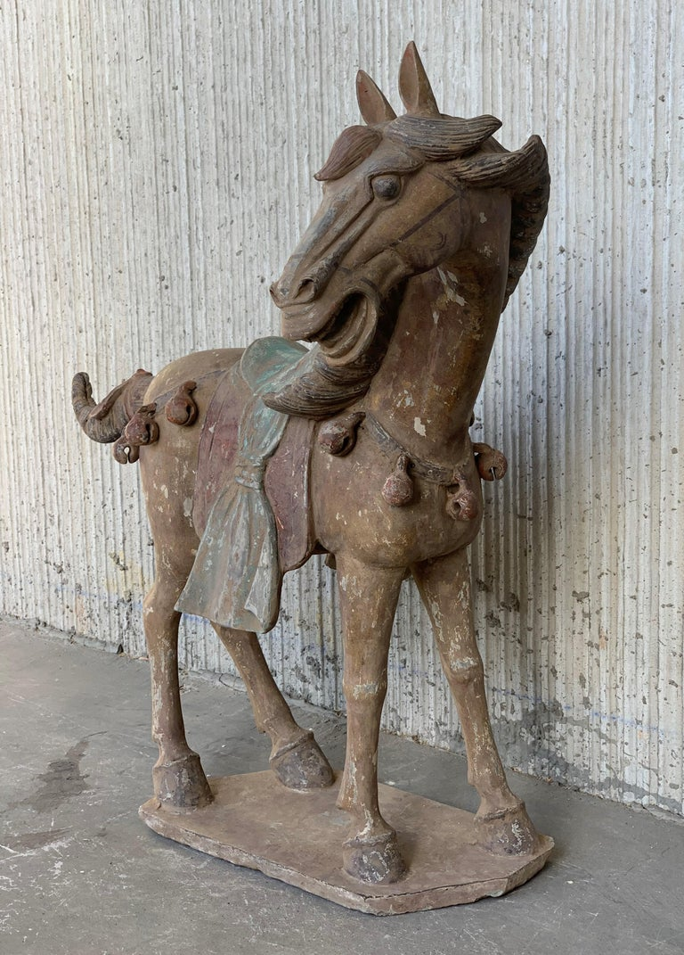 Pair of Han Dynasty Terracotta Horses, China, '206 BC-220 AD' For Sale 6
