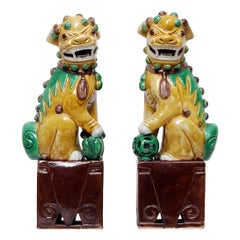 Pair of Hand Enamelled Chinese Porcelain Foo Dogs