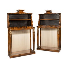 Pair of High Regency Coromandel and Ormolu Bookcase Console Tables