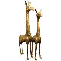 Pair of Hollywood Regency Brass Giraffes