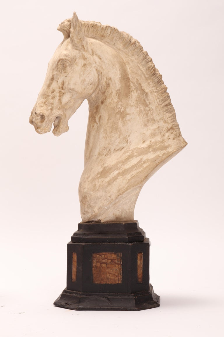Pair of horse's heads. Over the octagonal wooden black painted base is set a cast of a horse head. Along the sides of the plinth base, there are 8 Paesina stone (figured stones) slabs. The cast for drawing teaching in Academy. Italy, circa 1870.