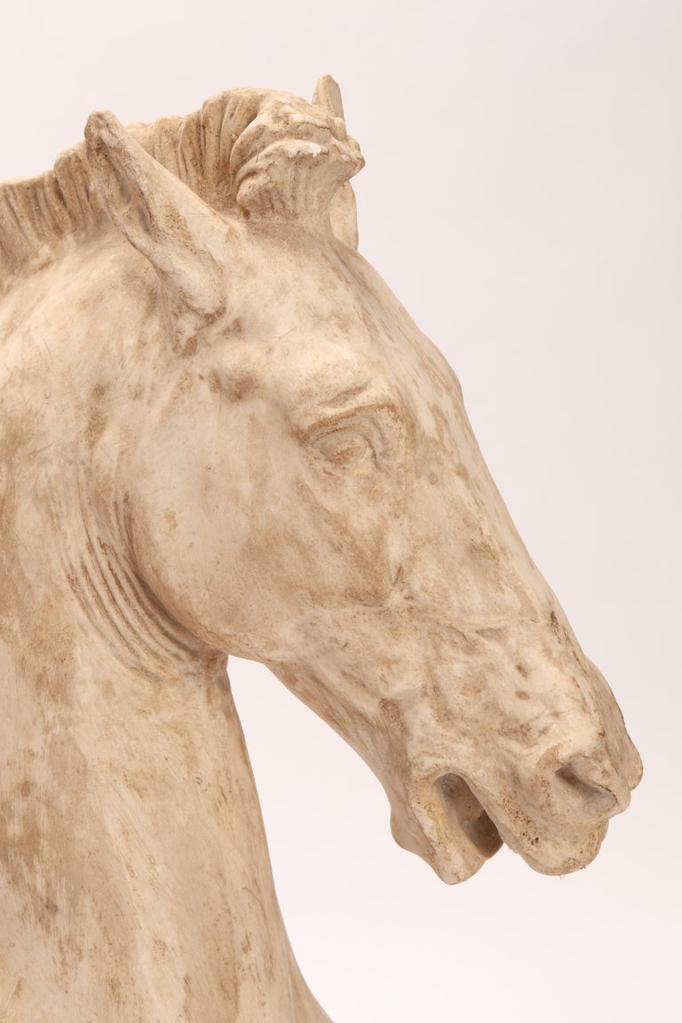 Stone Pair of Horse Heads, Italy, 1870 For Sale