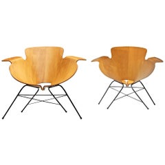 Eugenio Gerli Pair of Italian Armchairs in Plywood and Metal