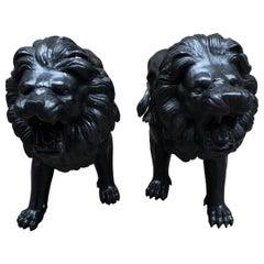 Pair of Italian Bronze Lions Medici Statues, 20th Century